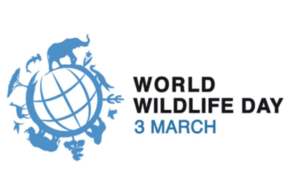 This World Wildlife Day, we take the opportunity to remind our members to remain vigilant to the wildlife trafficking trade.